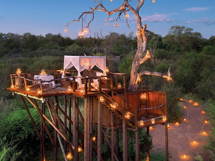 Chalkley Treehouse, Sabi Sands, South Africa
