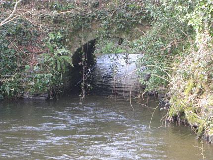 Pont ar Zimarch, Koad ar Vouster en Landeleau