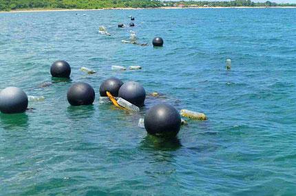 """キリンサイを固定する50mロープ(海面下)とそれを支える""""浮き"""""""