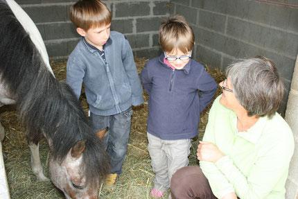 Cheval et Sens : les journées partagées avec les poneys pour les enfants