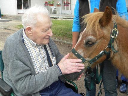 La thérapie avec le poney satisfait les besoins de contact et de relation des seniors.