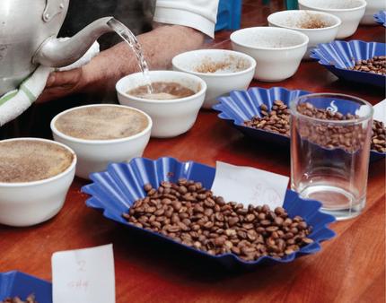 café, cafe, café en grano, cafe en grano, café molido, cafe molido, café colombiano, cafe Colombiano, , 100% colombianao, compra lo nuentro,Colombia, cafe de Colombia, juanvaldez, amor perfecto, el mejor café, catación, eventos, lanzamientos, catering