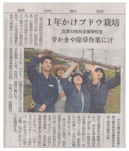 静岡新聞 平成23年4月28日掲載