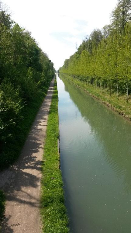 le canal de l'Ourcq depuis le parc forestier de Sevran