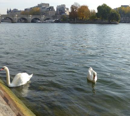 visite guidée de Paris avec Hélène pont de Paris