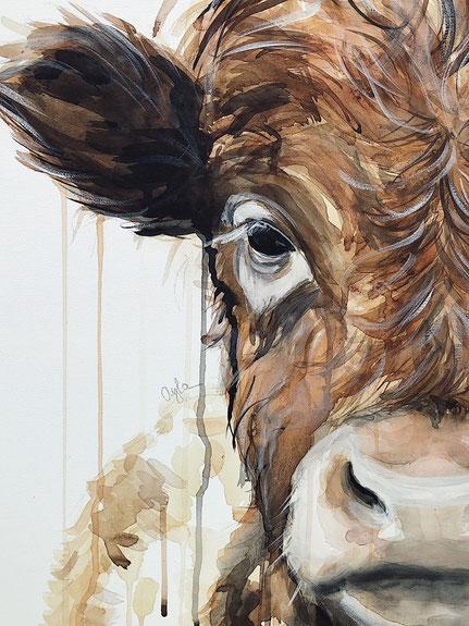 Gemälde , Tierporträt einer Baby Kuh, Kalb, aus Aquarell und Acryl auf Leinwand © Ayla Phoenix Art