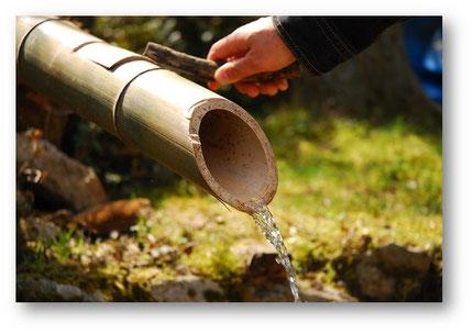 脊振の天然水