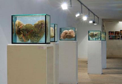Géza Szöllősi, flesh art, body art, Fresh Project