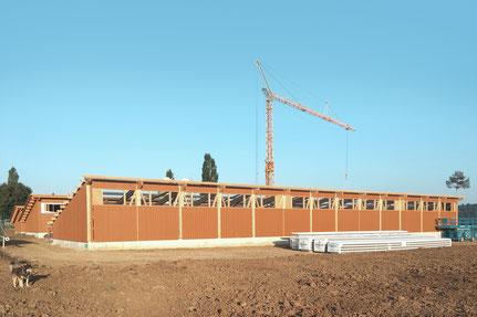 Bau der neuen Schweineställe Hof Ebnet
