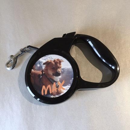 Druckatelier46 Mülchi-Bern Personalisierbare Hundeleine ausziehbar