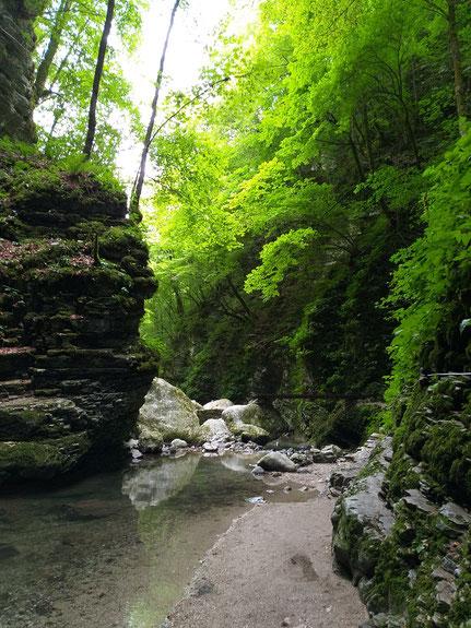 Tal des Kozjak Flusses