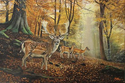 Damwild im Herbstwald 40 x 60  Preis 200€