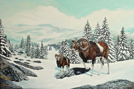 Mufflon im Schnee (2020) 40 x 60 Keilrahmen