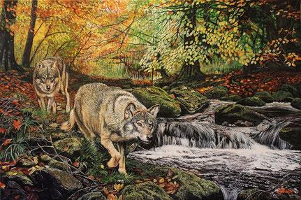 Wölfe am Bach 40 x 60 (2)    Preis 300 €
