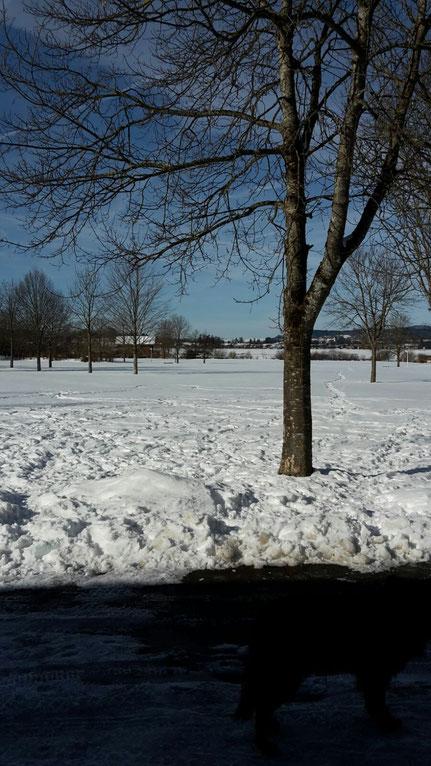 Unser Zeltplatz im Januar 2017