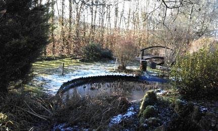 jardin japonais sous le givre