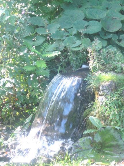 kl. Wasserfall im Doblhoffpark