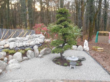 niwaki sur chamaecyparis obtusa à Champagnole, Jura (39), Franche-Comté