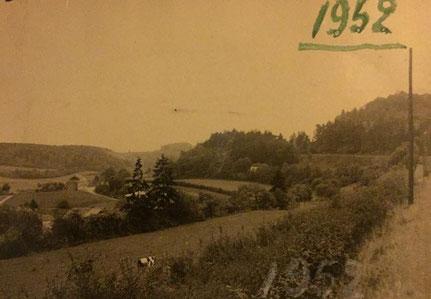 Foto aus Sicht vom Weg zur Muttergottesknippchen in Richtung rue de la Montagne. Hinten links das Café Braun Franz und rechts im Wald das alte Haus wo Martine Nero ihre Eltern 7 Jahre lang gewohnt haben. Das Haus war im Besitz der Providencegesellschaft.