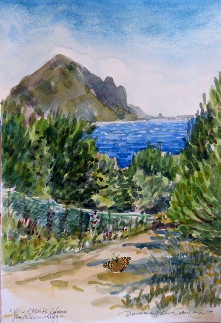 """View to Monte Cofano and butterfly"" by Doranne Alden, Malta"