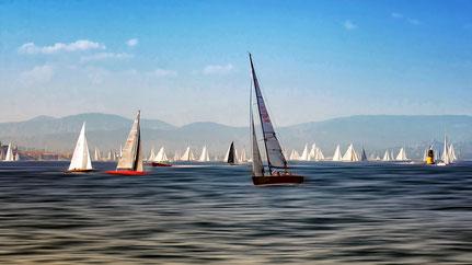 Haut les voiles dans le golf de Saint-Tropez
