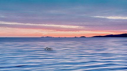Mateo Brigande, La galerie de Mateo, paysage, décor, couleur, campagne, urbain, maritime, coucher de soleil, lever de soleil, campagne, montagne, Hdr,panorama