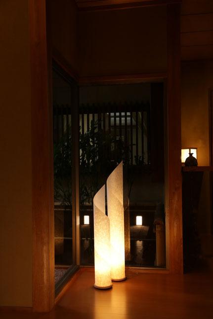 ヨシ紙 間接照明 成長