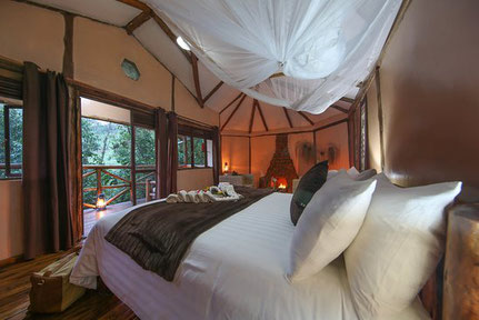 gorilla-safari-lodge.jpg