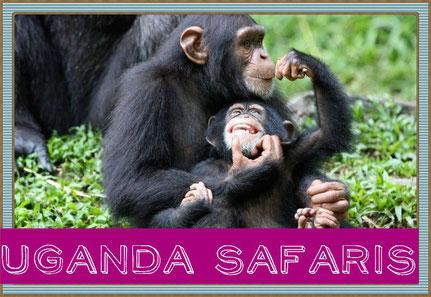 uganda-gorilla-tracking-tours.jpg