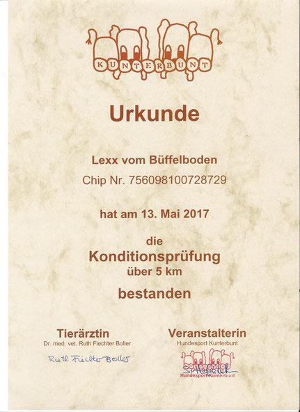 Kondition getestet am 13.Mai 2017