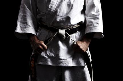 Netzwerkpaket - Bild Kampfsportler mit Stolz und erfolgreich durch Unternehmensberatung