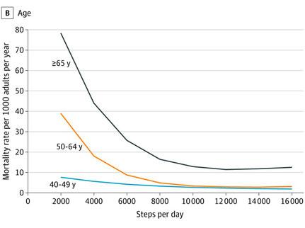 歩行数と世代別死亡率