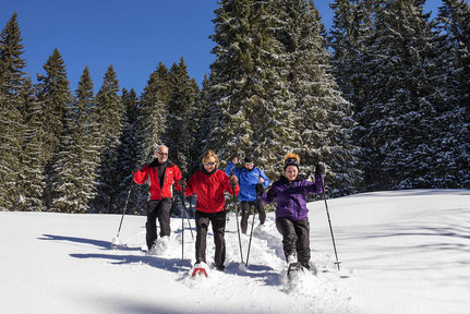 Vermietung Tourenski-, Ski- und Schneeschuhausrüstung
