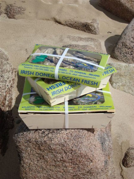 Stack of Irish Donegal oysters in 3 different size boxes on a rock