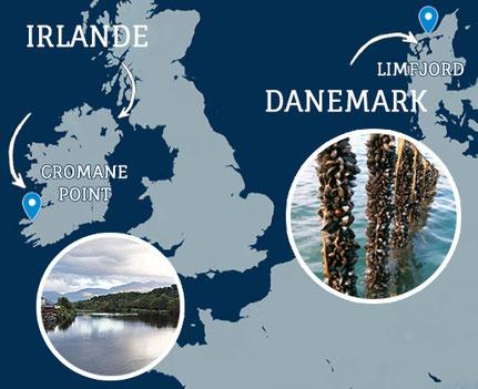 moules de cordes Irlande et Danemark