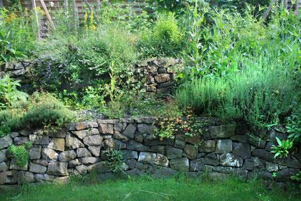 Naturnaher Garten in Kriens