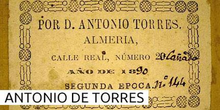 Antonio de Torres Guitars Museum Archive Gitarre