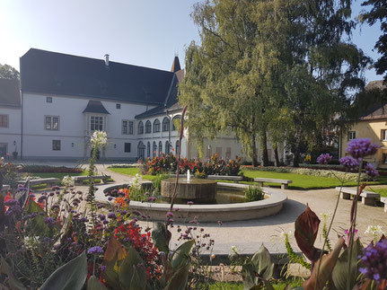 MAG Lifestyle Magazin online Urlaub Reisen Österreich Wels Sehenswürdigkeiten Burg