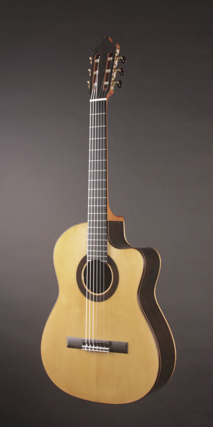 Heeres Guitars Geneva Nylon Jazz, Brazilian Rosewood