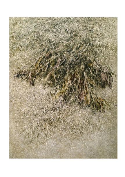 Broken Flowers III 2015 Kunstharz, Steinmehl, Acrylfarbe, Ölfarbe auf Leinwand  210 x 160 cm