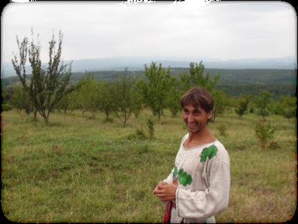 迪馬與他的果園