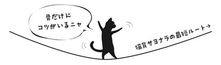 猫背は骨で立つと簡単にサヨナラできる