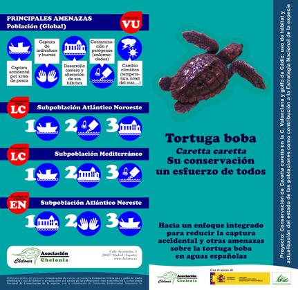 Folleto tortuga boba y amenazas (exterior)