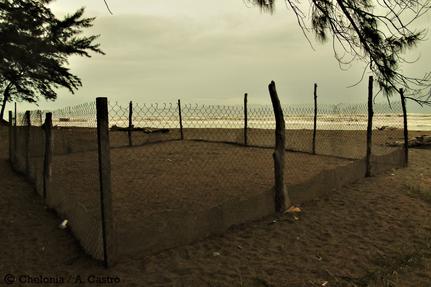 Campamento tortuguero en el estado de Veracruz (México)