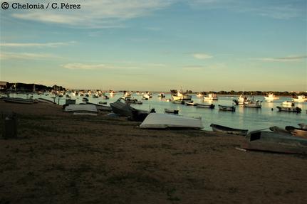 Playa de puerto pesquero