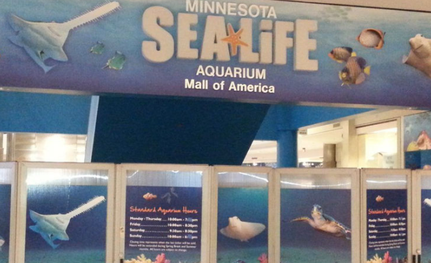 "Aquarium in der ""Mall of America"", MN"