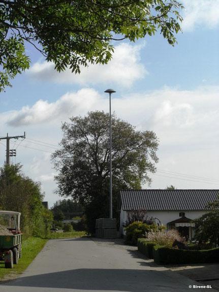 Großsoltholz