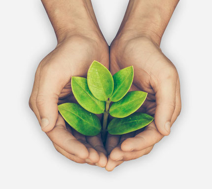 Dein-Bewegungs-Impuls Ethno Health