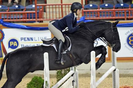 Madison Goetzmann, Amerikaans kampioene Equitation en 4* springamazone