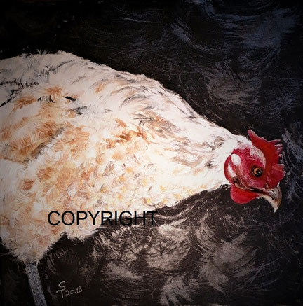Huhn mit weissen Federn und rotem Kamm ist seitlich dargestellt. Das Huhn schaut nach unten